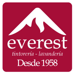 LOGO_EVERESTGRUPO